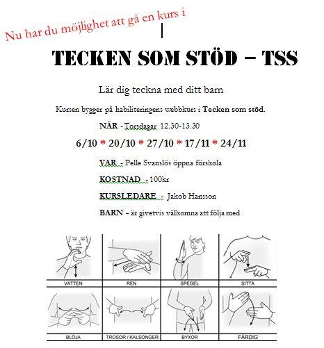 TSS – tecken som stöd