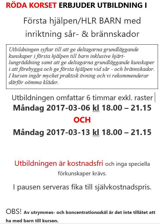 You are currently viewing Barn HLR-kurs på Svanslös