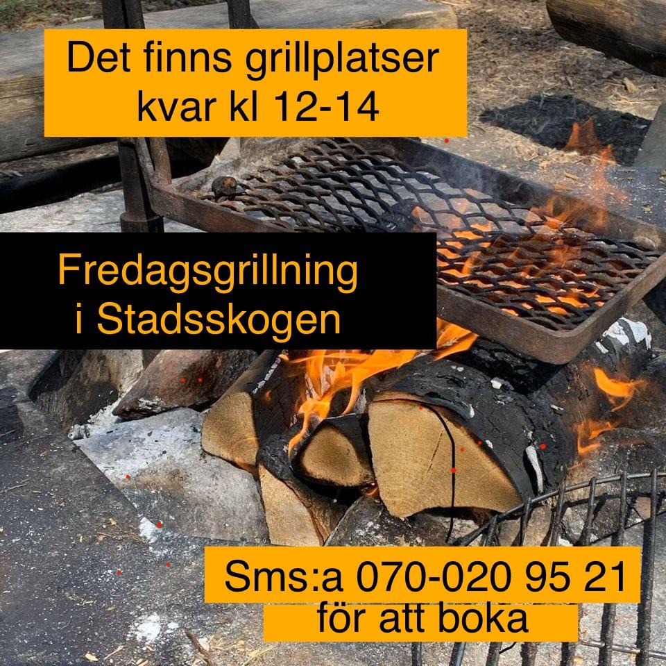 You are currently viewing Bokningsbara platser kvar till grillningen