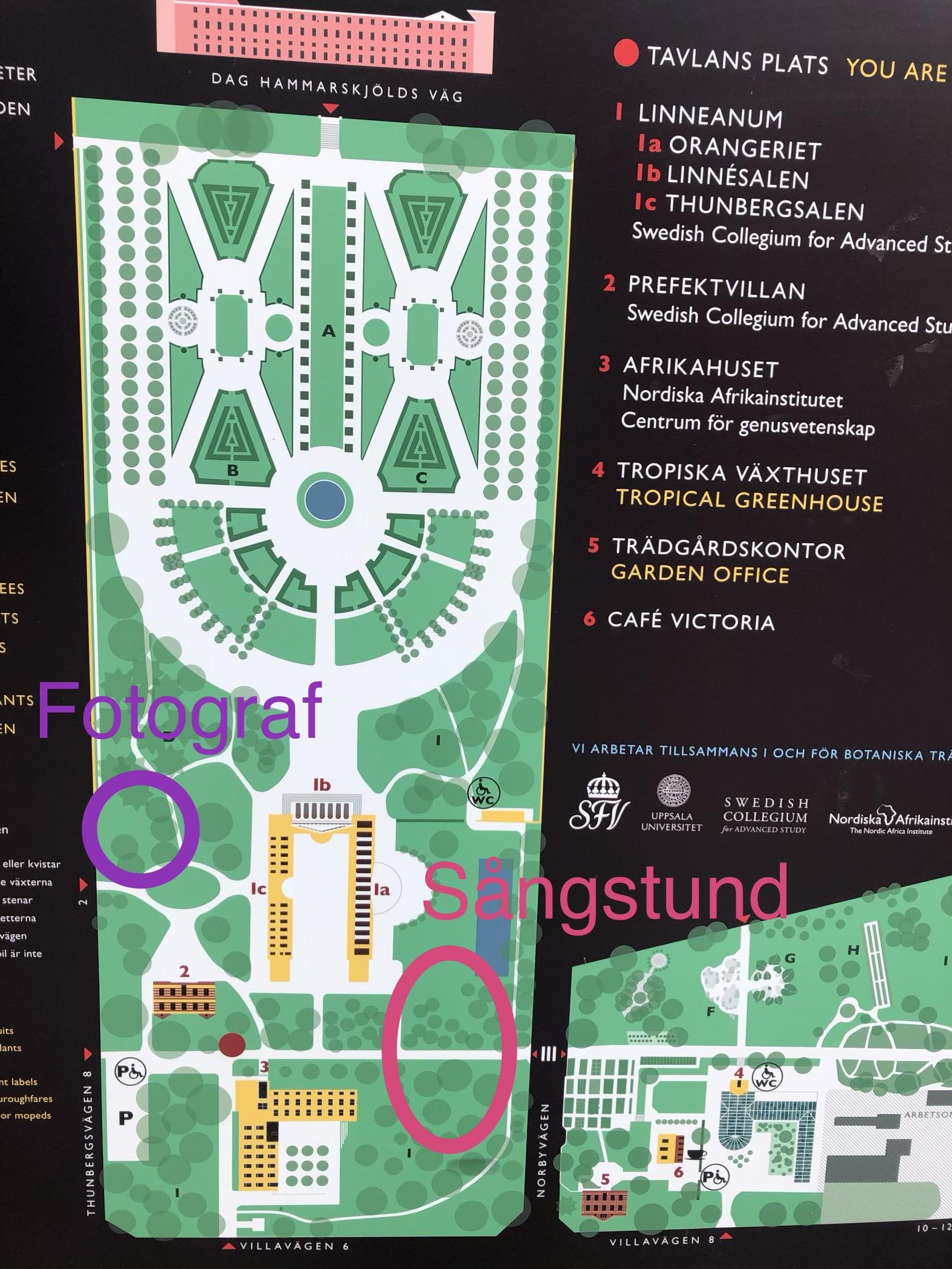 You are currently viewing Fotografering & sångstunder i Botaniska 14/9