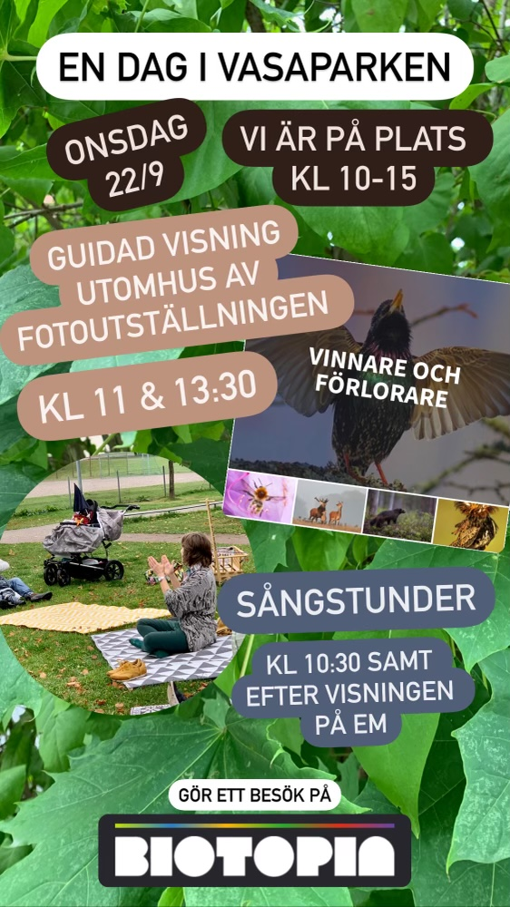 You are currently viewing Onsdag 22/9 Vasaparken 10-15